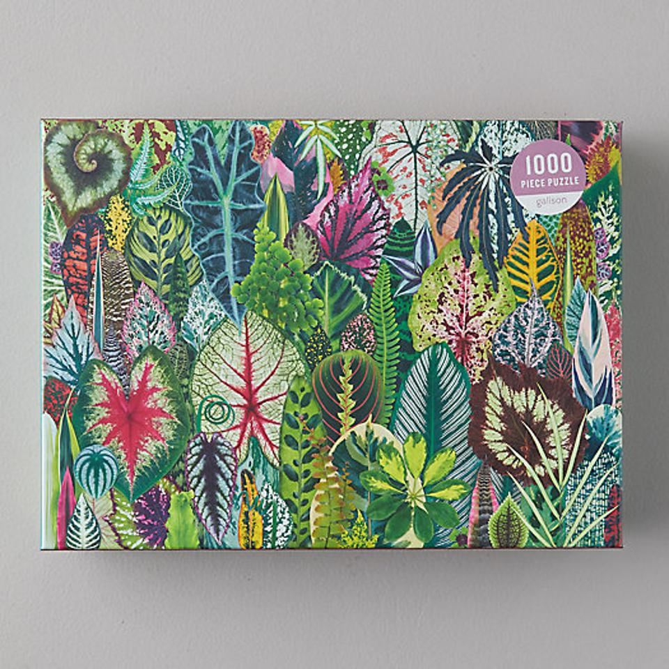An illustrated puzzle featuring all different types of plant leaves