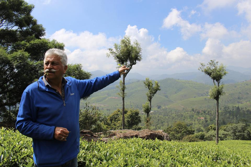 Indi Khanna touring the tea fields in India.