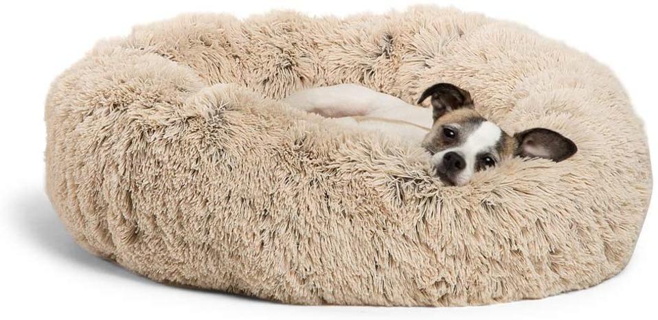 Best Friends by Sheri Calming Shag Vegan Fur Donut Cuddler, Small, with little dog resting inside