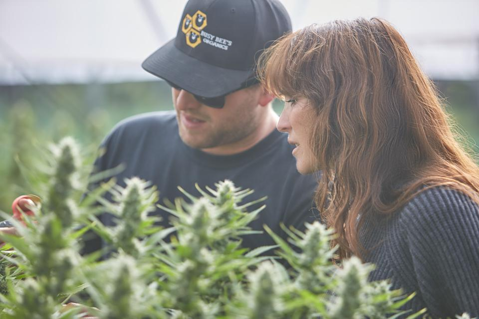 Rotman and her husband, Nate Ryan on their 63-acre organic cannabis farm.