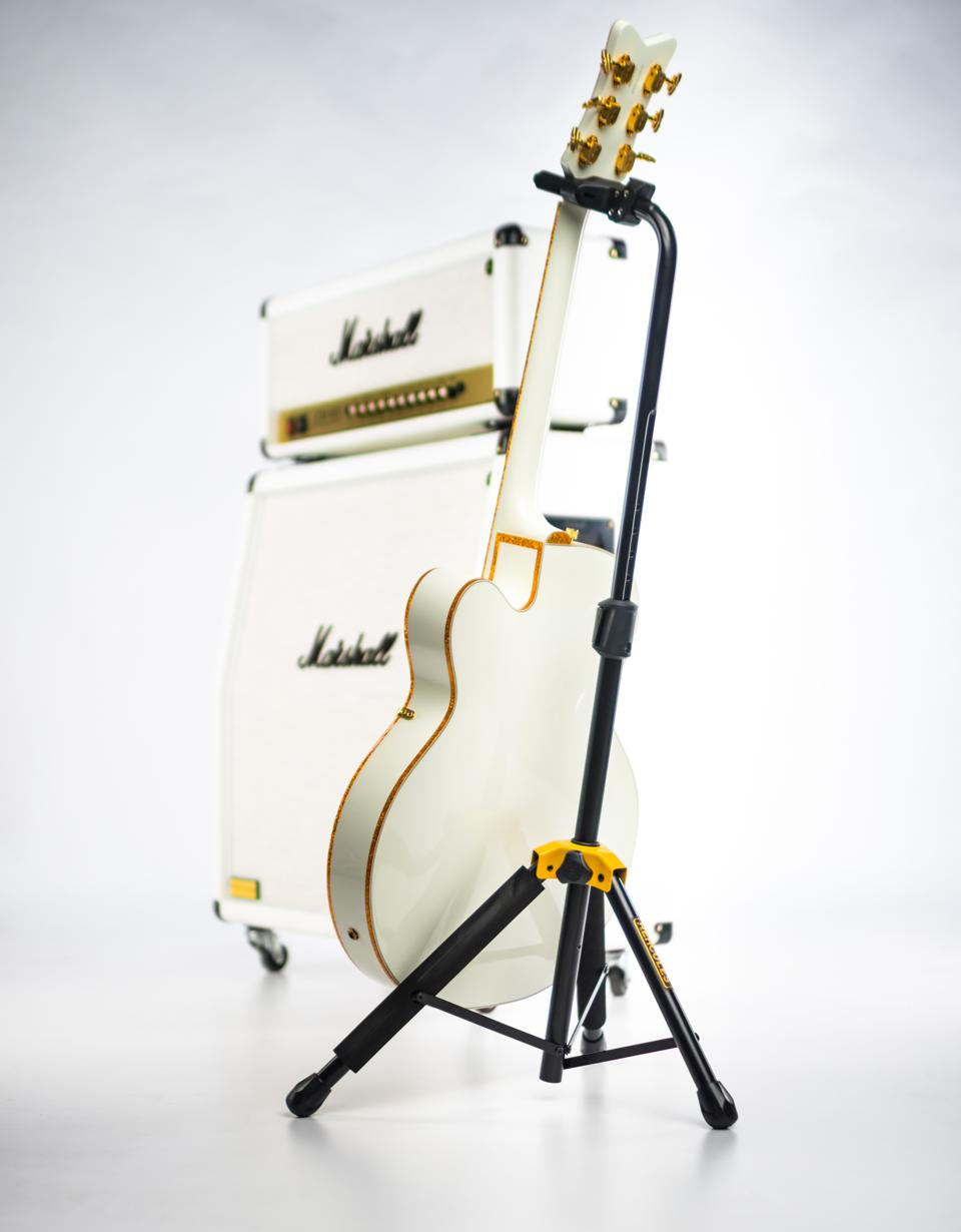 Guitar on a Hercules guitar stand