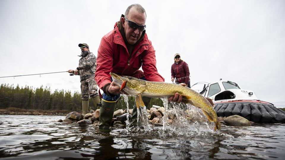 Fishing for Pike