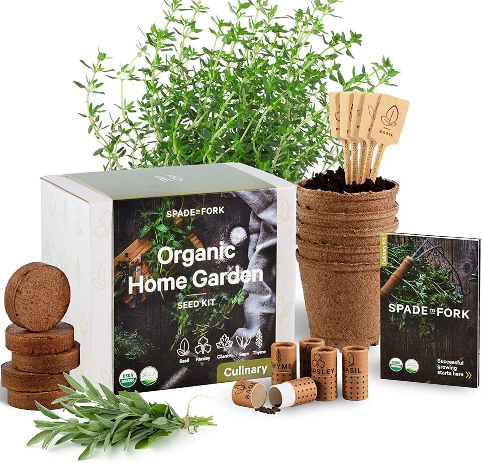Spade to Fork organic home garden kit