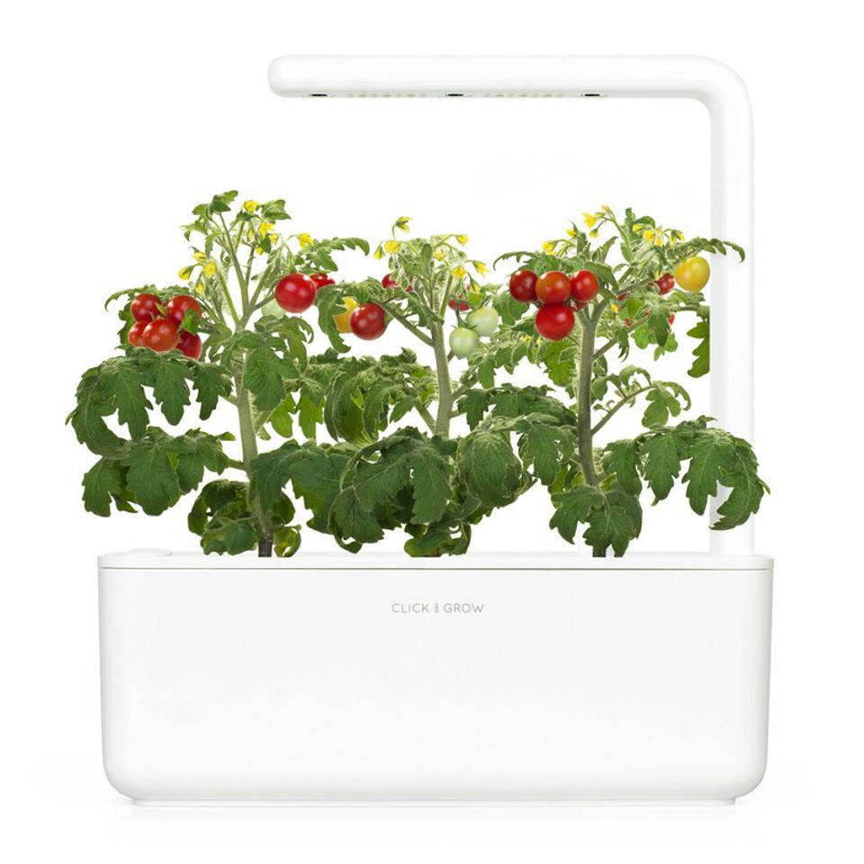Click & Grow herb garden with tomatoes