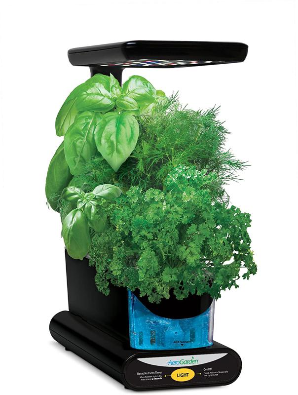 AeroGarden herb garden for small spaces