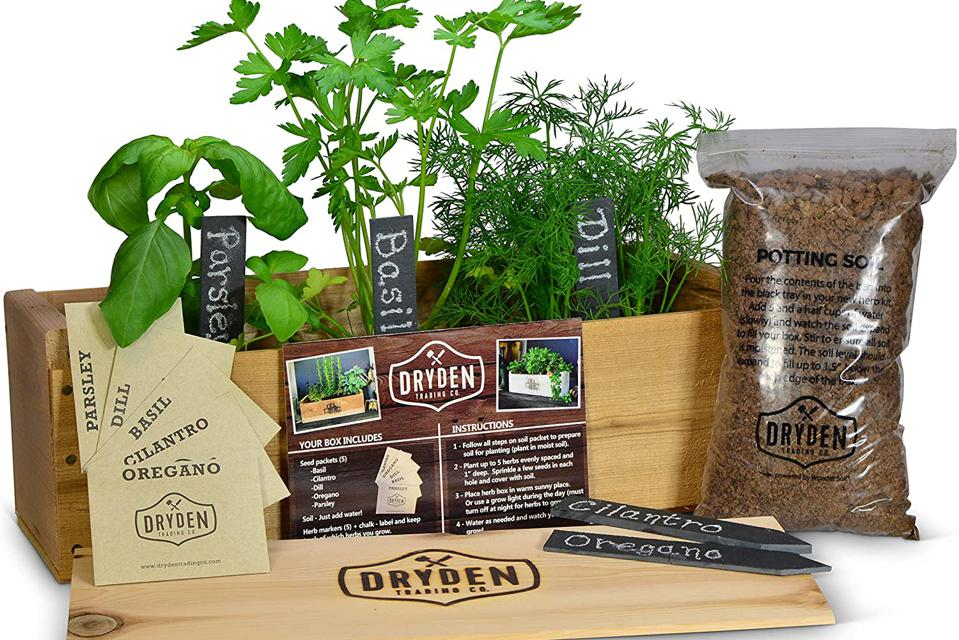 Dryden Trading Co. herb garden kit with herbs and potting soil