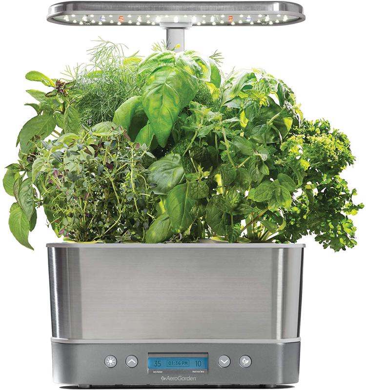 AeroGarden high-tech indoor garden with tomato plants.