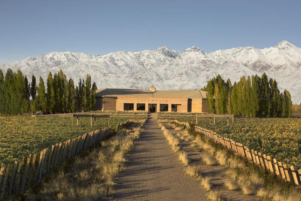 Salentein winery in Uco Valley, Argentina