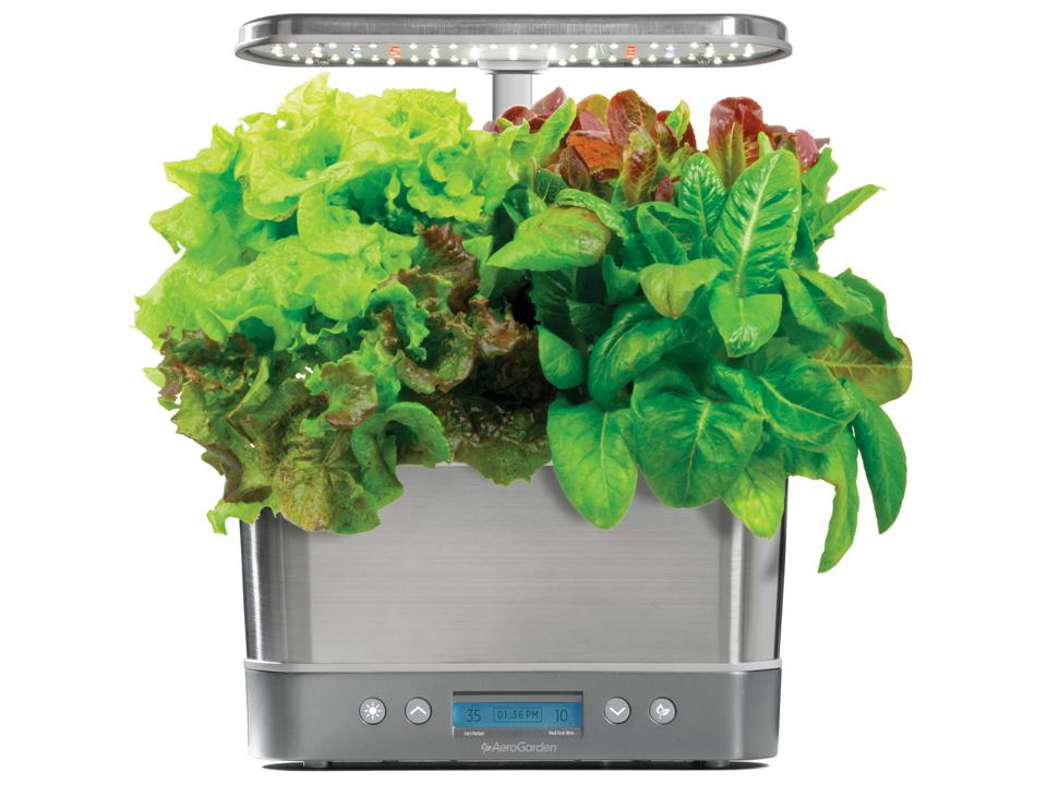 Best in-home gardening kits for Father's Day: AeroGarden Harvest Elite