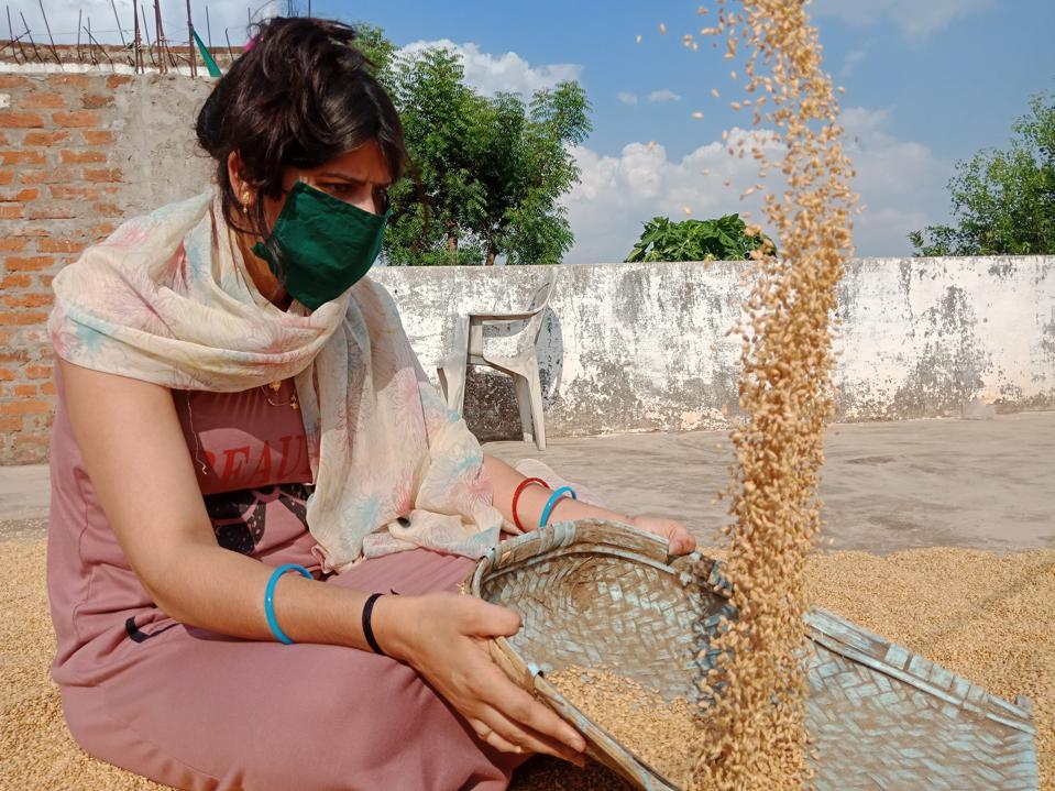 India COVID-19 face mask farmer woman