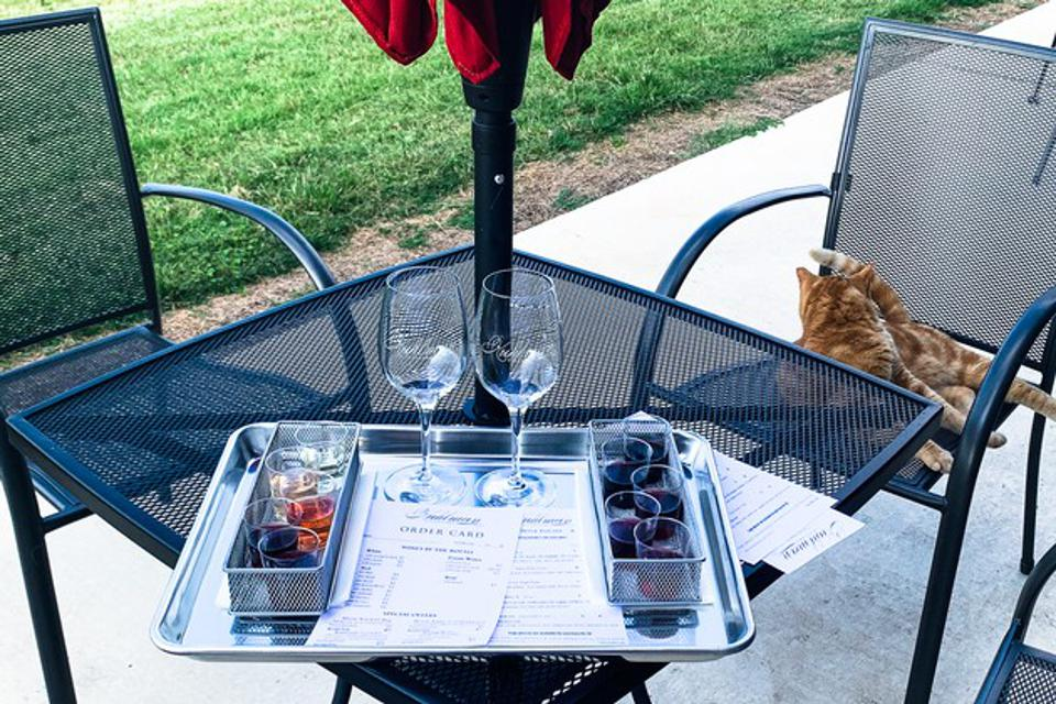 outdoor table with wine tasting set up and kitty