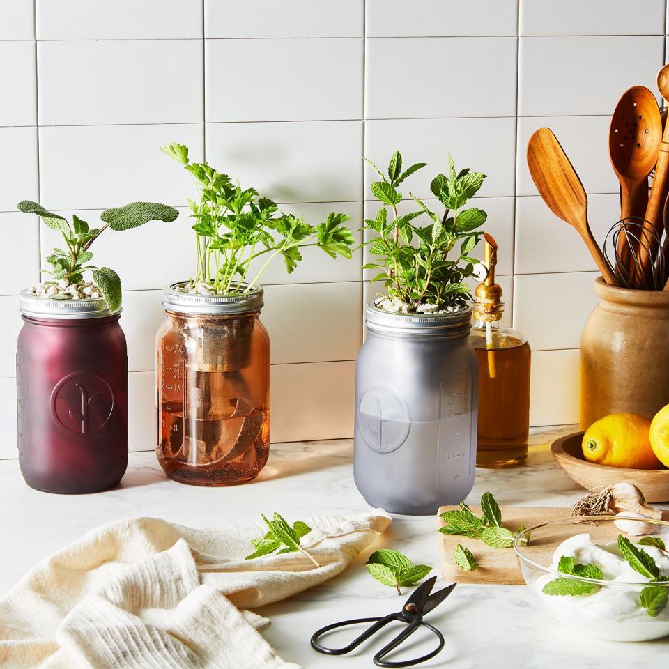 Modern Sprout Garden Har Herb Kit