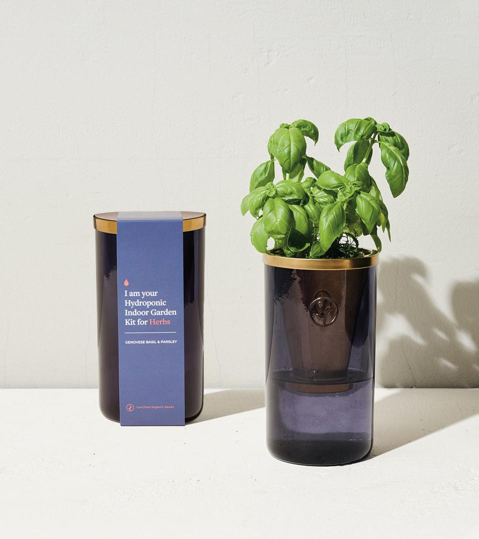 Modern Sprout Hydroponic Garden Tumbler Kit