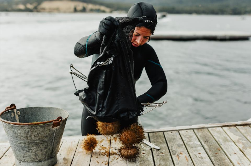Tasmania chef Analiese Gregory forages, fishes and dives for produce found across Tasmania, Australia.