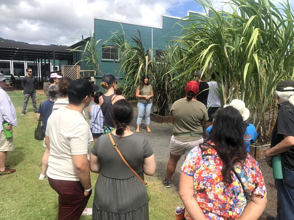 Tiffany Tubon, brand outreach and special events manager, telling the stories of the sugar canes at Ko Hana Distillers on Oahu