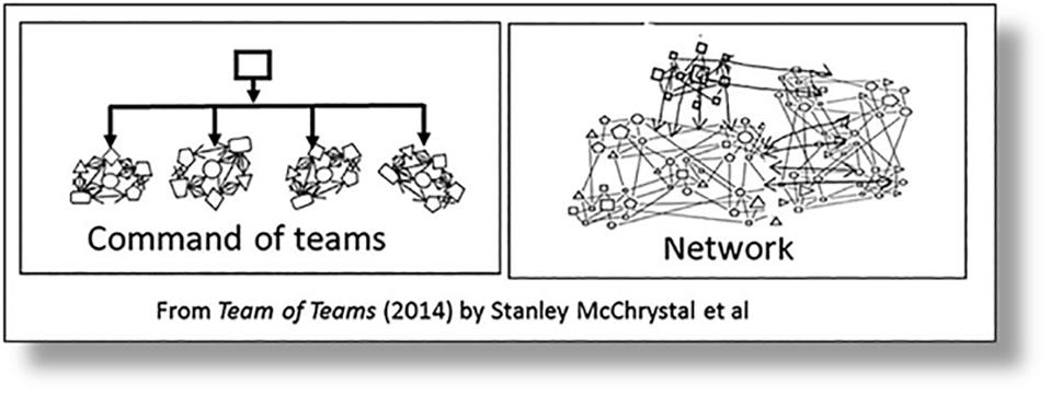 Contrast between vertical hiararchy of teams and a horizontal network