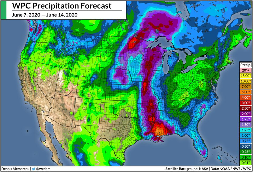 The Weather Prediction Center's rainfall forecast between June 7, 2020, and June 14, 2020.