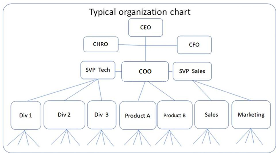 Typical org chart