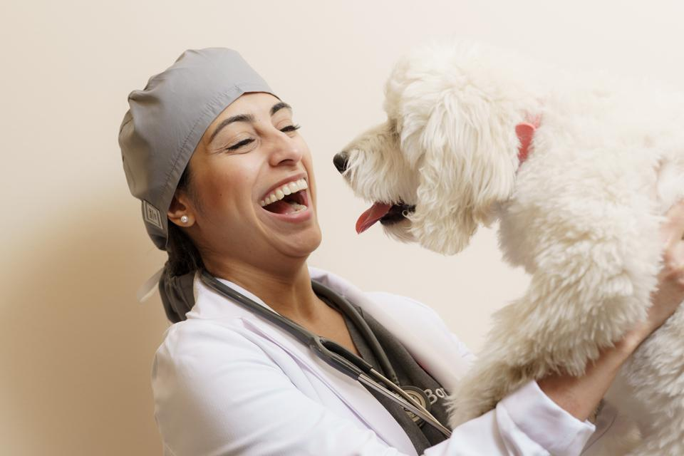 Co-Founder & Chief Veterinary Officer Zay Satchu