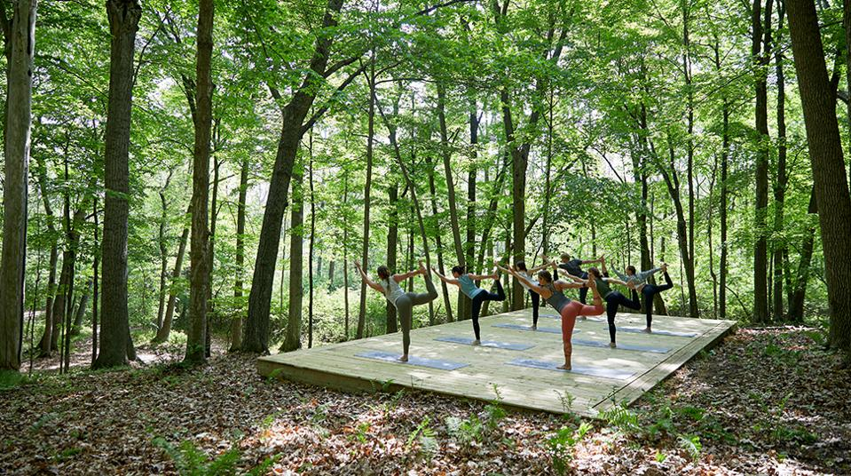 Yoga in woods
