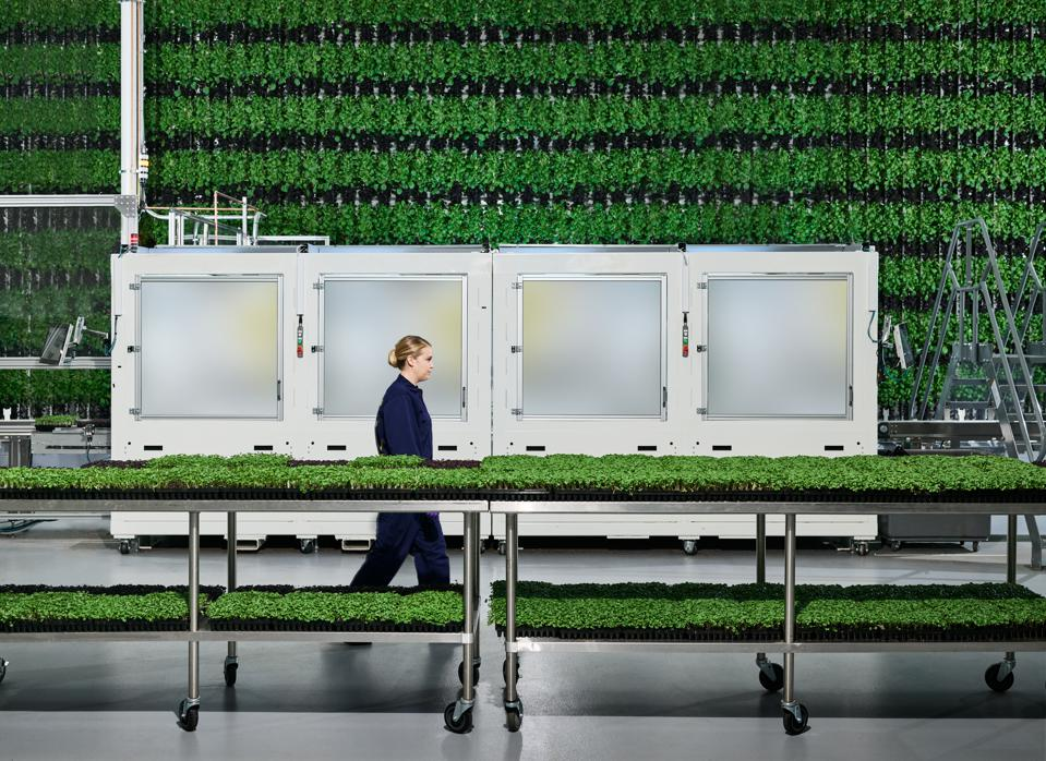 Plenty's goal is to build vertical farms in urban hubs.