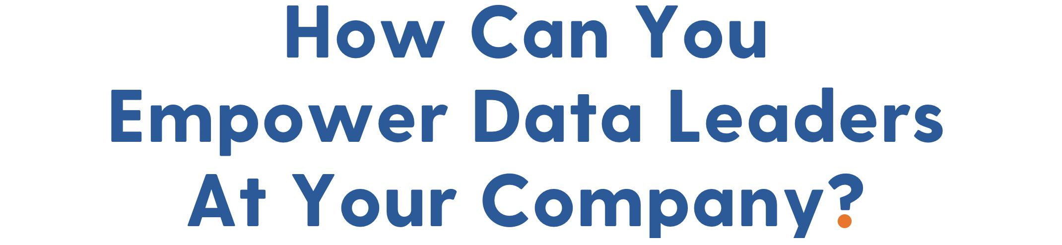Section 01: How Can You Empower Data Leaders At Your Company?