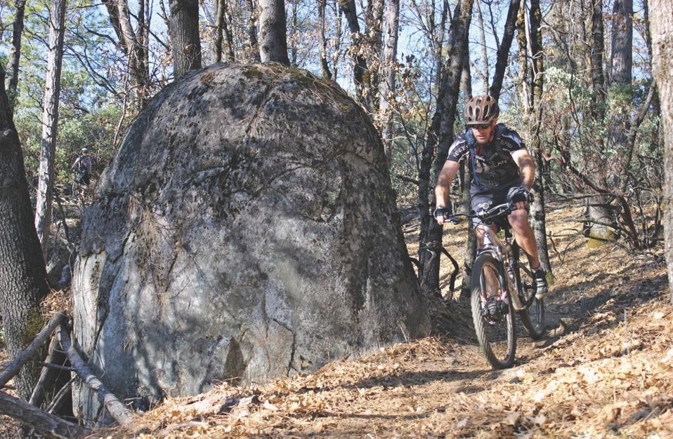 Mountain biking trails
