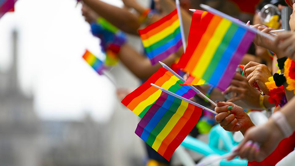 rainbow flags being waved at a gay pride parade