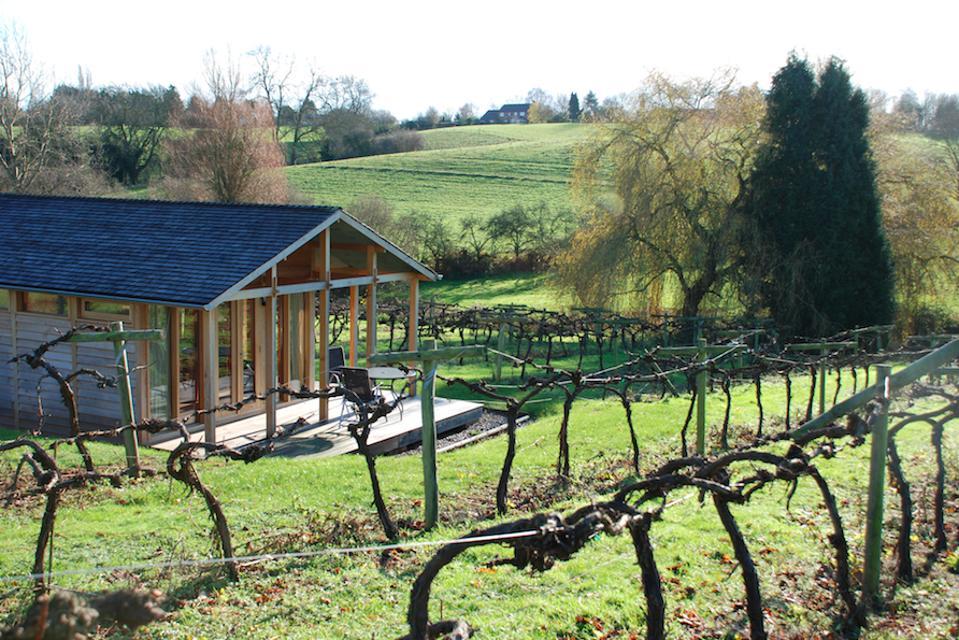 Three Choirs Vineyard in Gloucestershire, England.