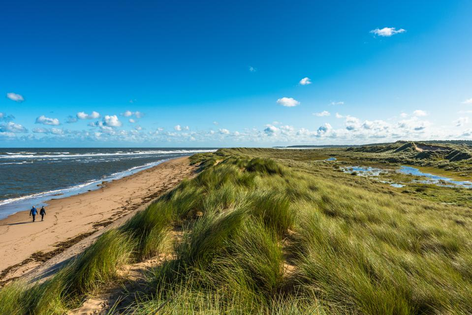 Sand dunes where Norfolk Coast path National Trail from Barnham Overy Staithe reaches the sea