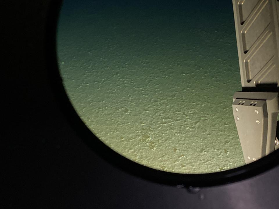 The view out the window of the Limiting Factor just after it hit bottom in the Mariana Trench.