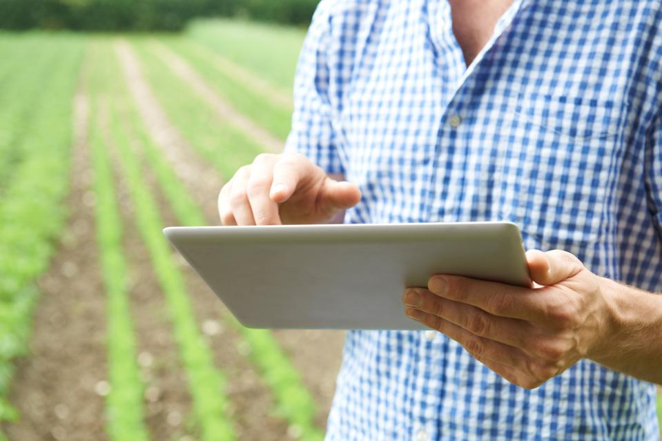 A farmer using a tablet device to help grow crops.