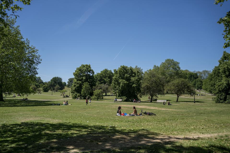 View onto Primrose Hill park