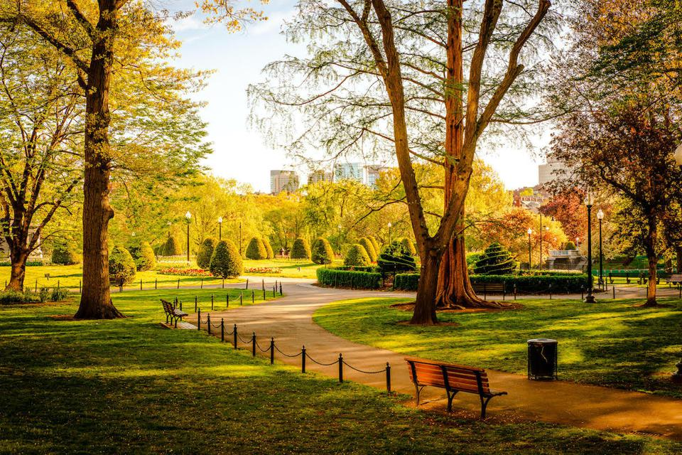 The Boston Public Garden without people during the pandemic.