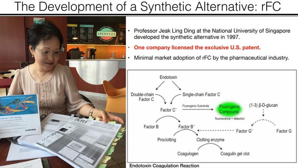 Professor Jeak Ling Ding at the National University of Singapore