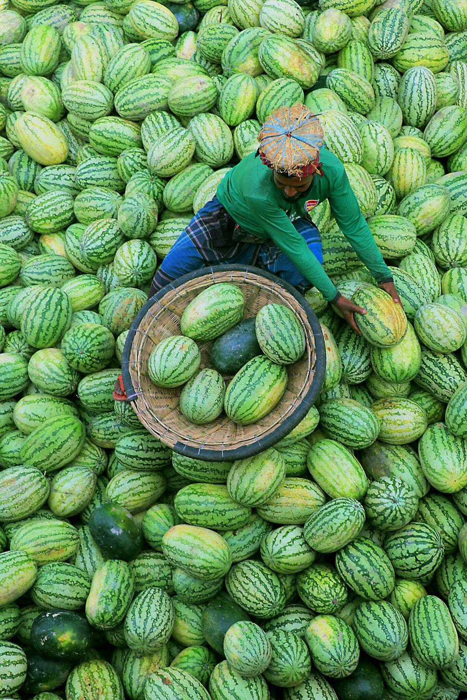 vendor surrounded by watermelons