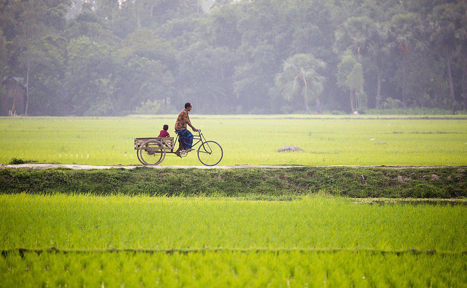father and small son biking to work on a rural road of Bangladesh