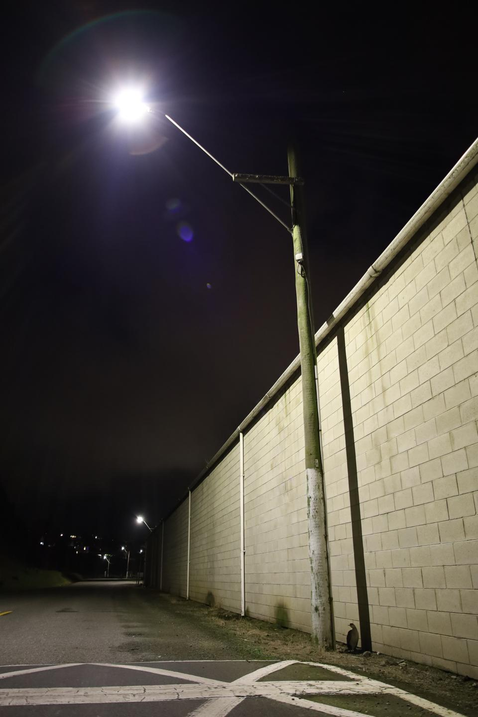A light post shows how much light pollution impacts our ability to see the sky beyond.