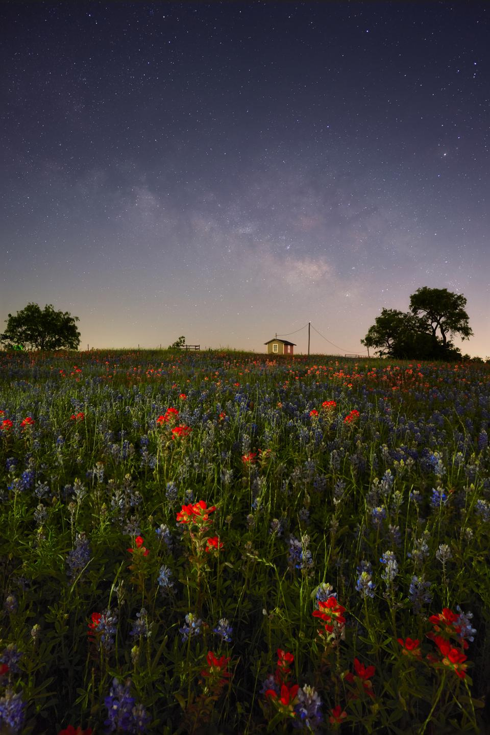 ″The Barn″ between the Milky Way and Texas lupines.