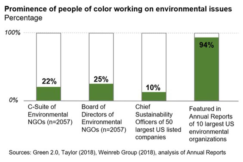 Analysis of representation by people of color in the environmental movement