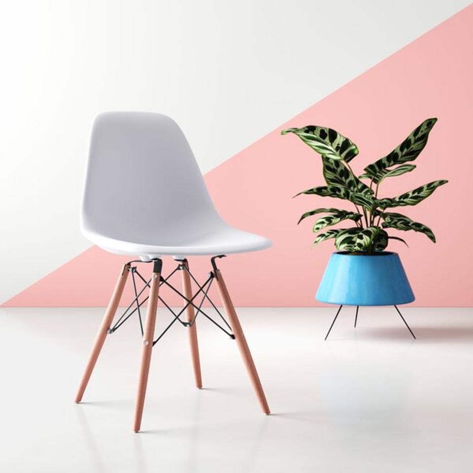 Hashtag Home Wrenshall Social Mid-Century Side Chair