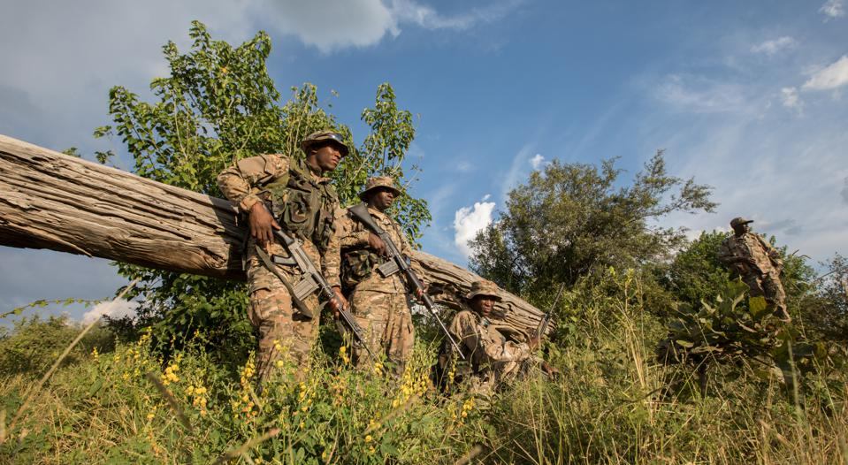 Conservation Africa News - Anti poaching rangers with rifles