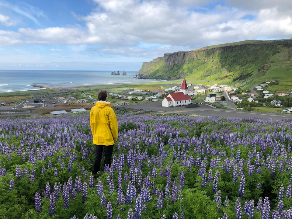 coronavirus COVID-19 Iceland travel tourism