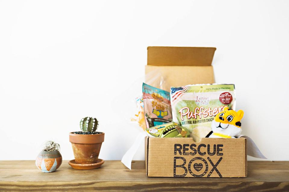 RescueBox subscription for pets