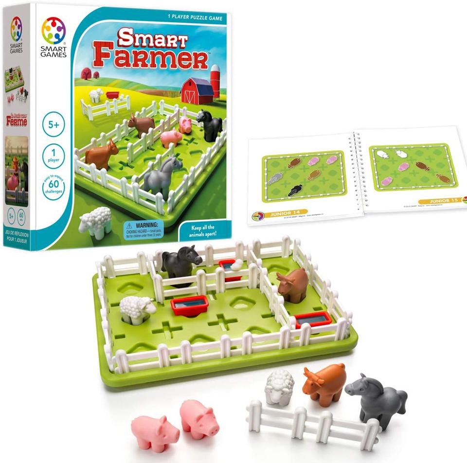 A puzzle board game.