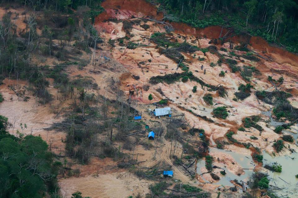 minería ilegal de oro en la Amazonía