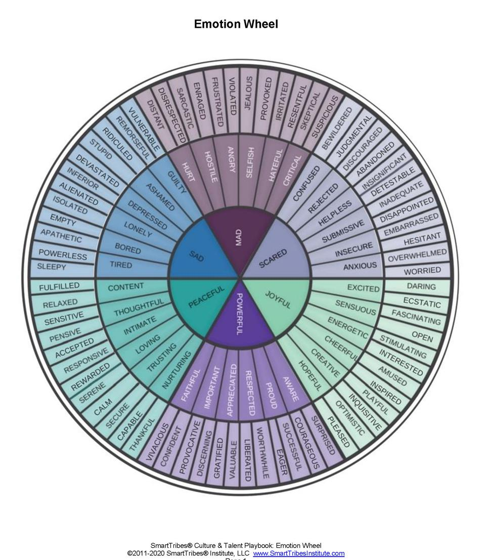 graphic showing a wheel with emotion names