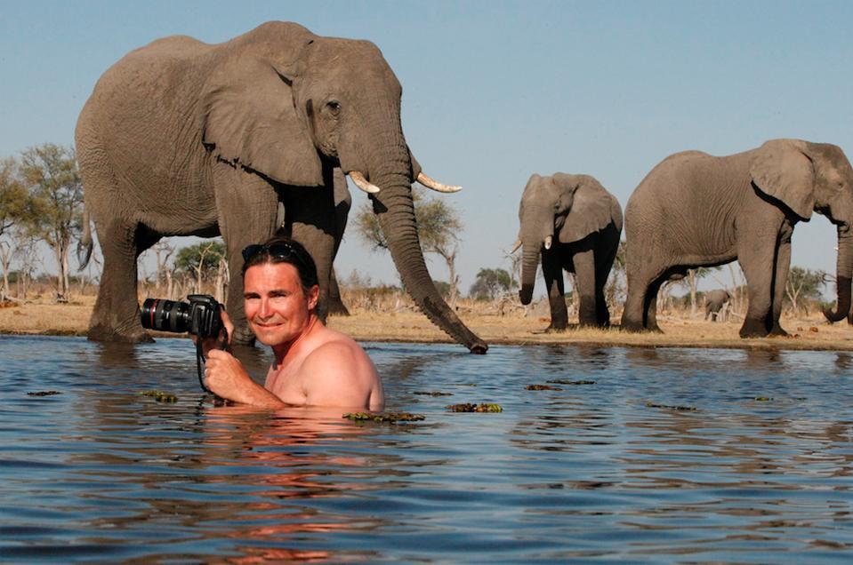 Banovich swimming with elephants