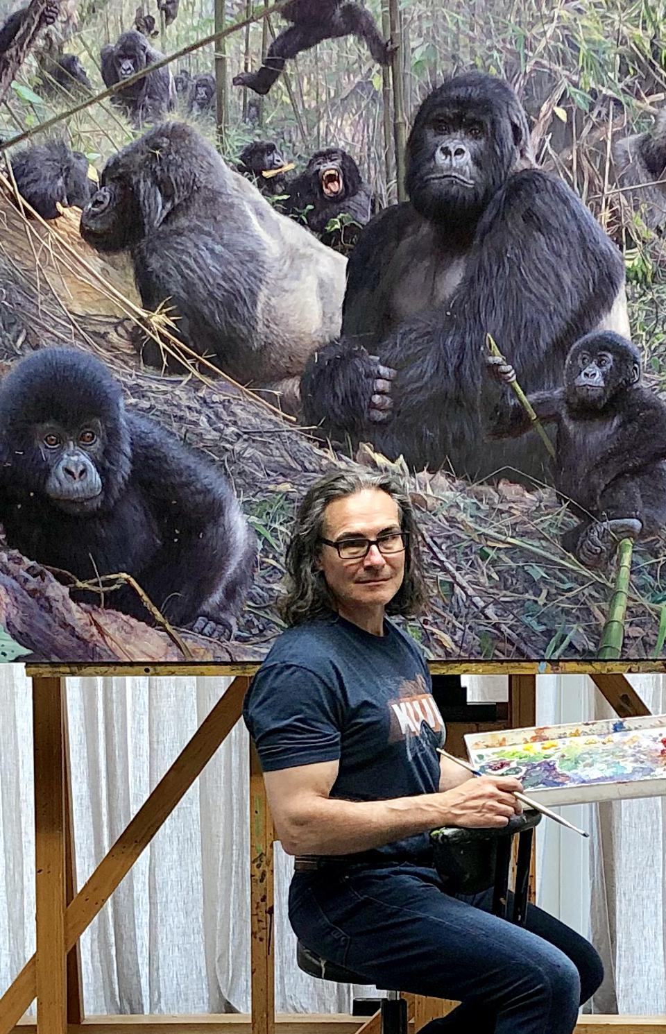 Conservation Africa News - Banovich at work on a dramatic mountain gorilla scene.