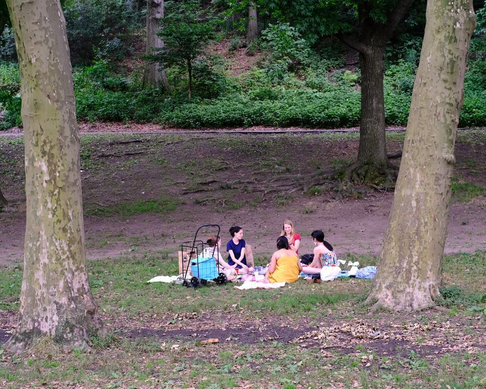 Ladies at a park picinic.
